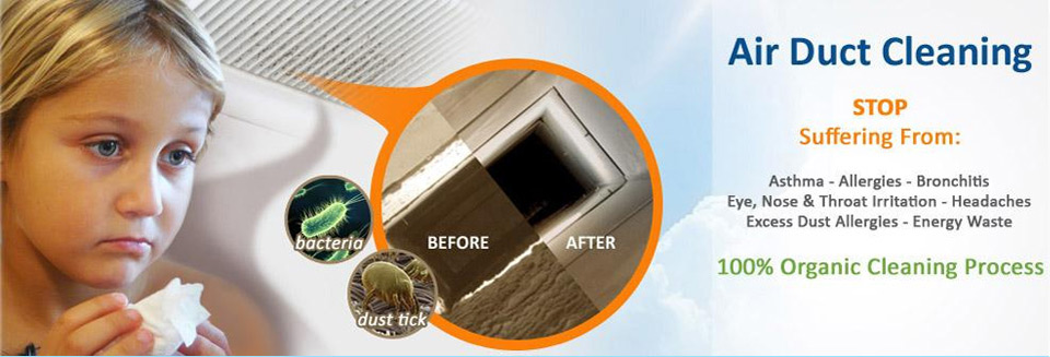 how to clean your attic